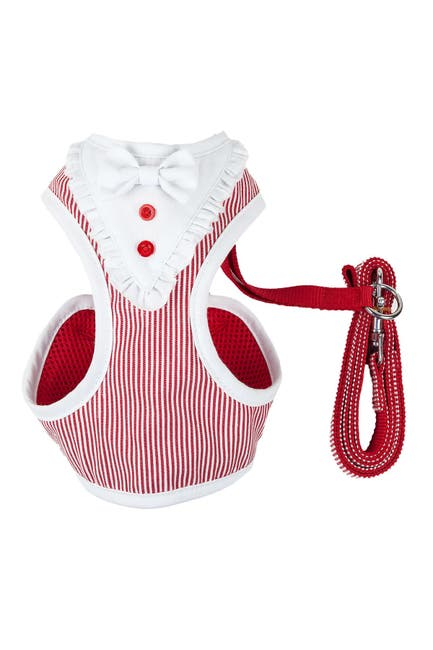 Image of PETKIT Extra Small Red LUXE Spawling 2-in-1 Mesh Reversed Adjustable Dog Harness-Leash
