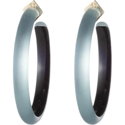 Alexis Bittar Retro Gold Collection Large Lucite Hoop Earrings