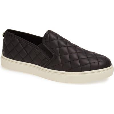 Steve Madden Ecentrcq Sneaker, Black