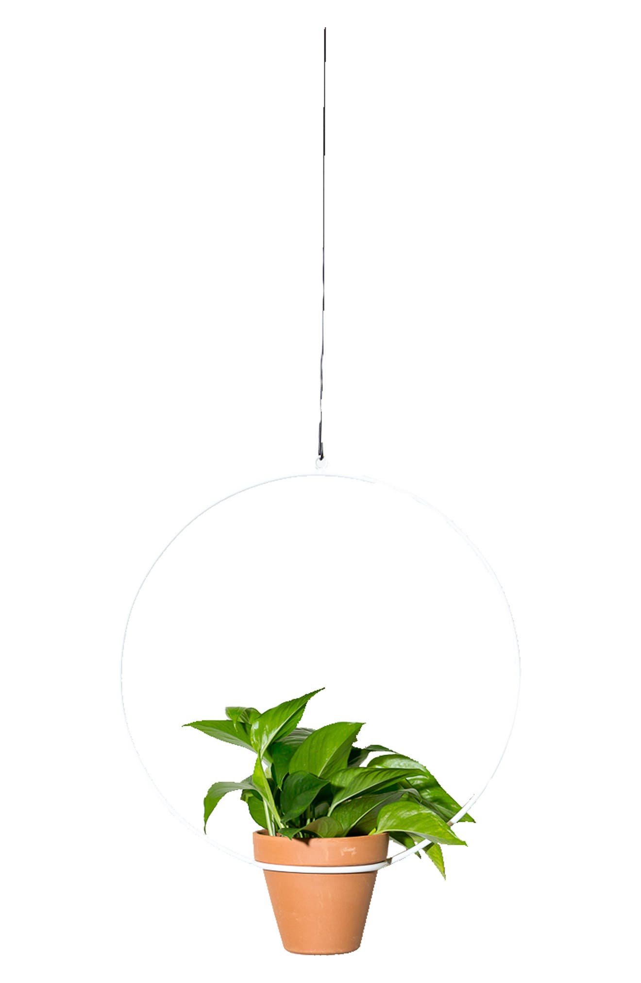 Showcase a small pot of greenery with mid-century-inspired flair using this minimalist, circular wire plant hanger. A powder coating allows for both indoor and outdoor use. Style Name: Newmade La Circle Hanging Planter. Style Number: 6055834. Available in stores.