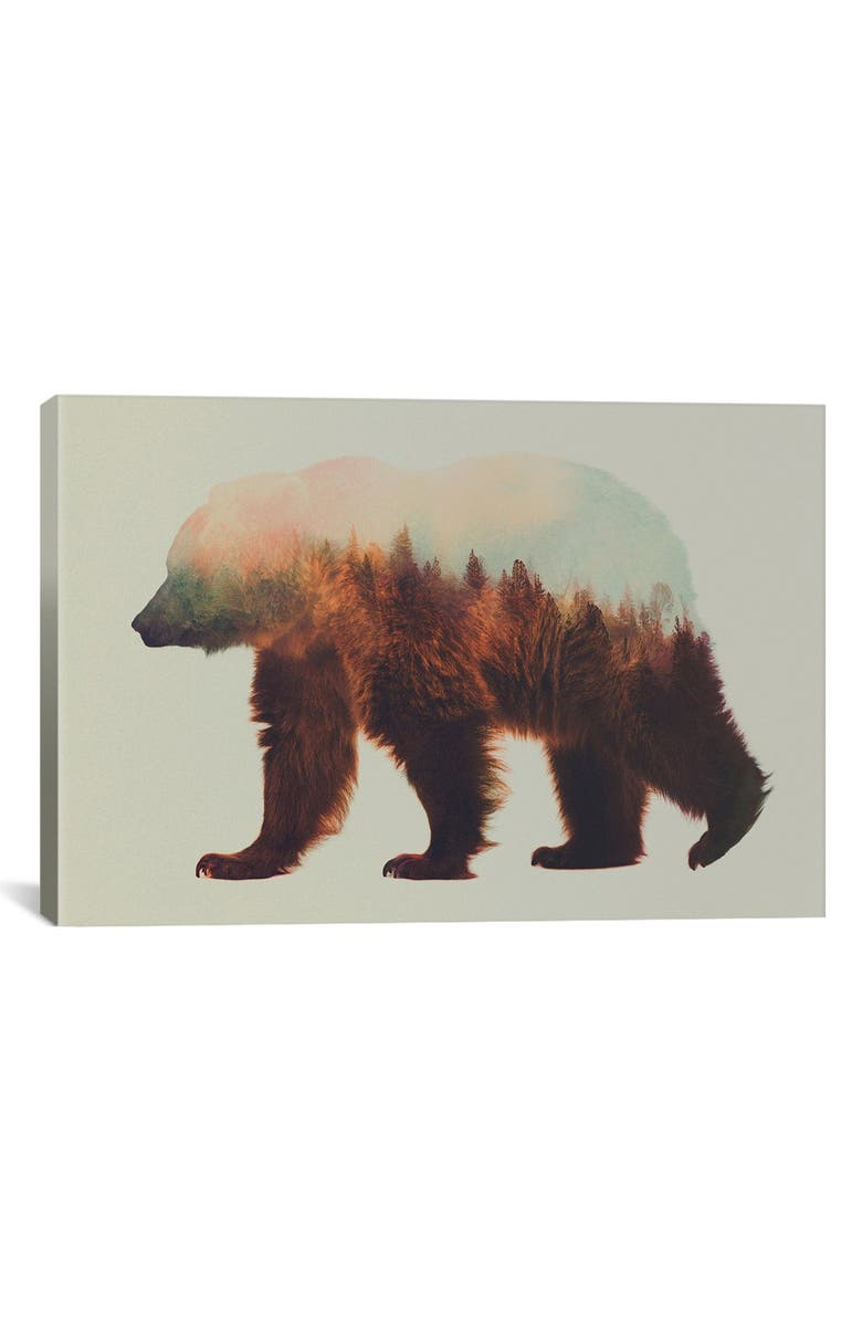 ICANVAS 'Bjorn' Giclée Print Canvas Art, Main, color, BROWN