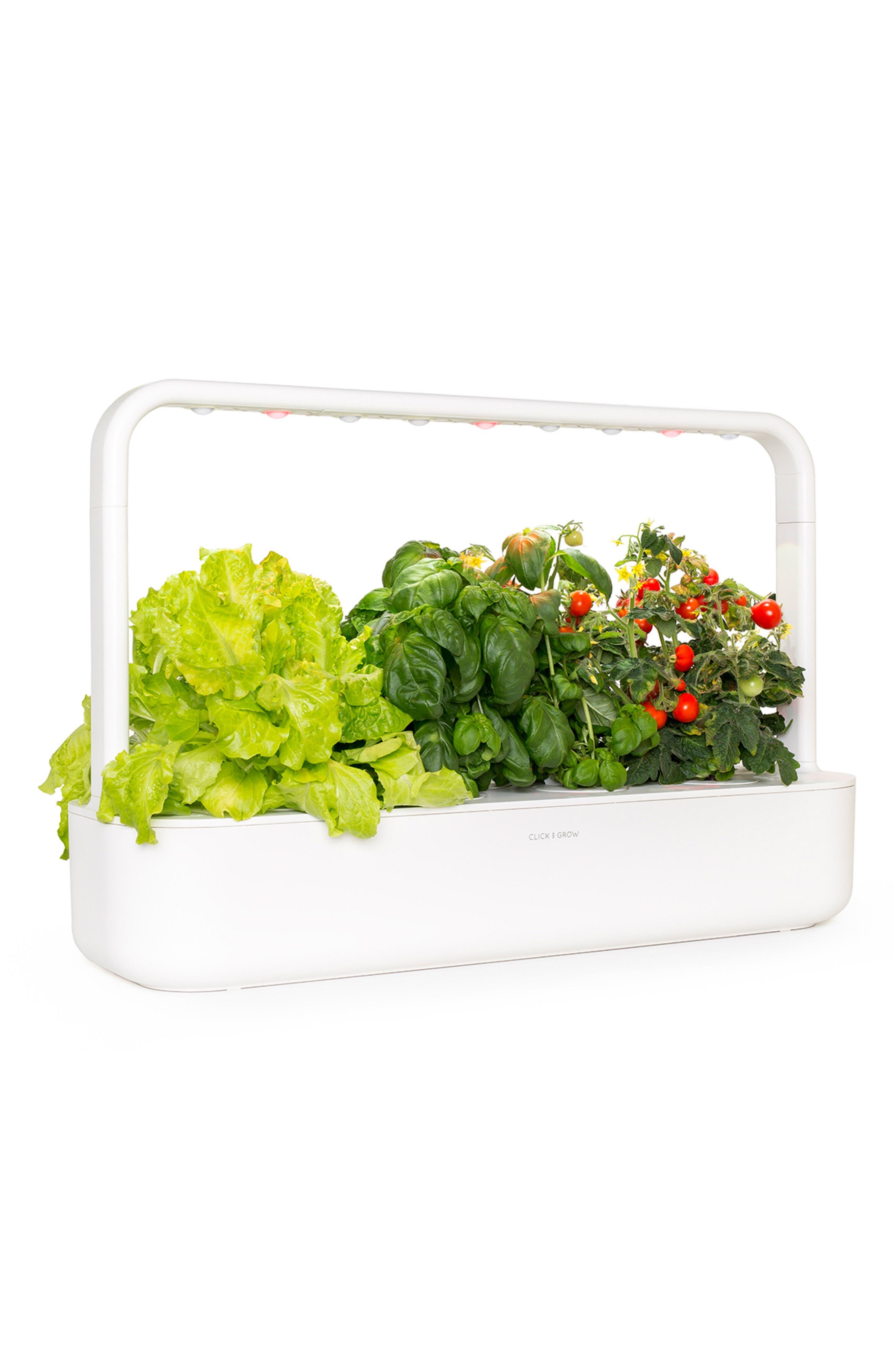 Click  Grow Smart Garden 9 Self Watering Indoor Garden Size One Size  White