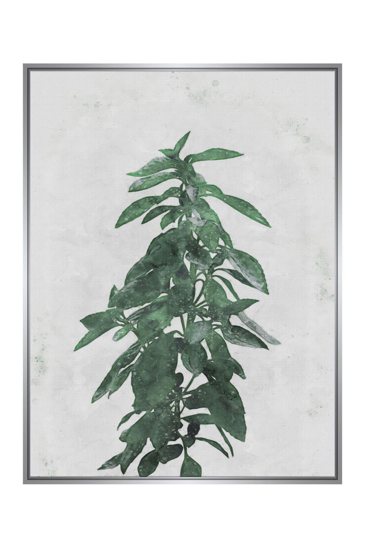Image of PTM Images Large Botanical #8 Rectangle Canvas