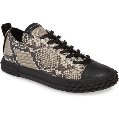 Giuseppe Zanotti Double Lace Sneaker, Beige
