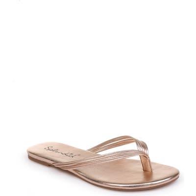 Splendid Shyanna Strappy Flip Flop