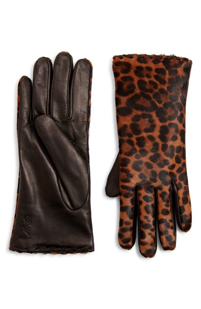 Polo Ralph Lauren Leopard Print Genuine Calf Hair Gloves In Leopard/ Black