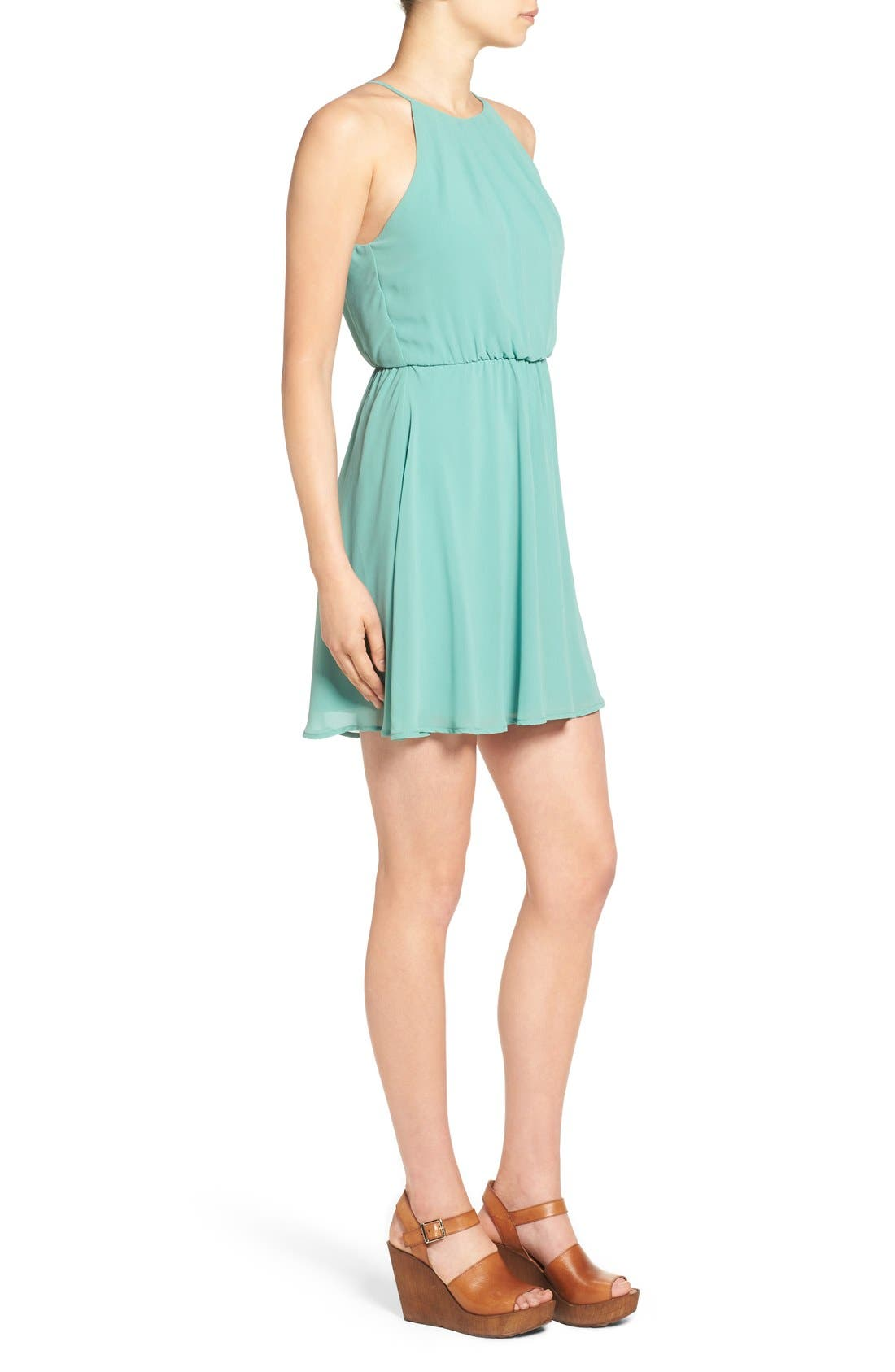 ,                             Blouson Chiffon Skater Dress,                             Alternate thumbnail 113, color,                             312
