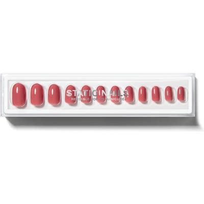 Static Nails Dusty Rose Round Pop-On Reusable Manicure Set - No Color