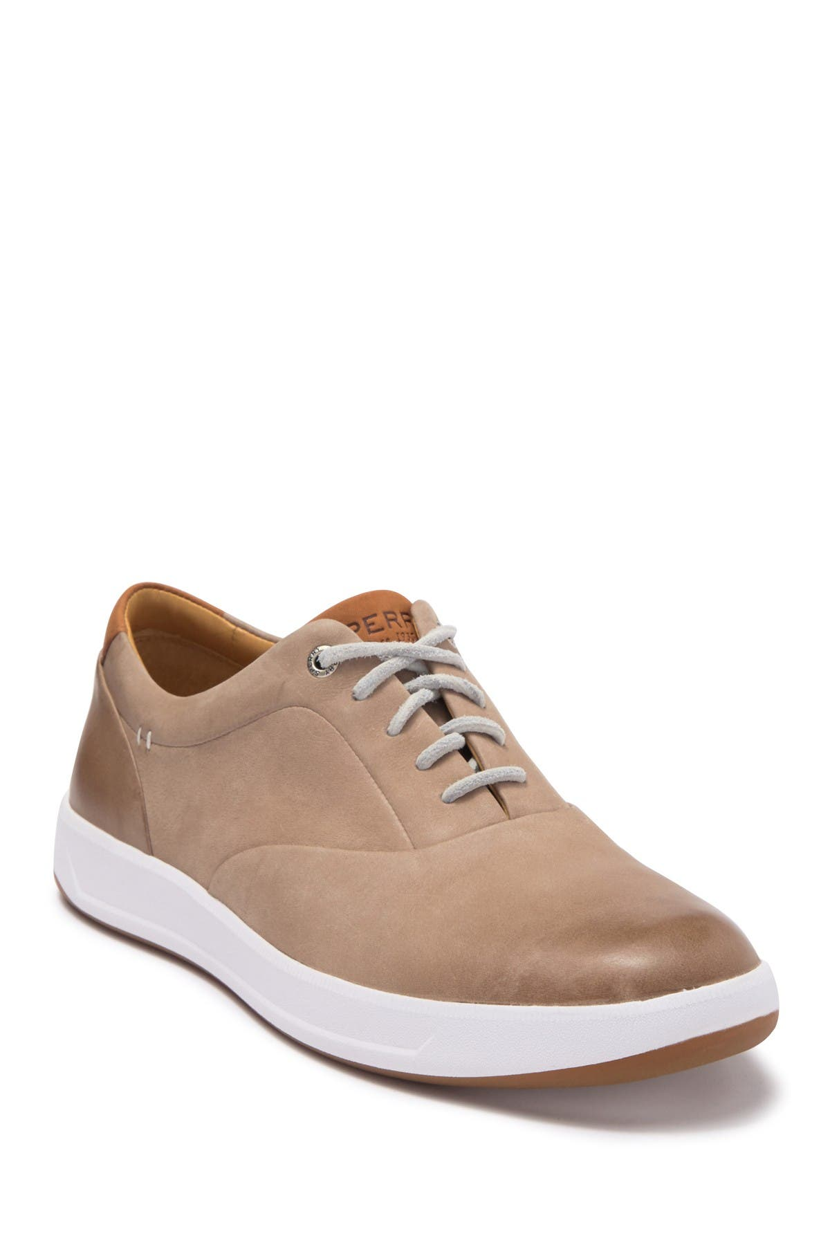 Sperry | Gold Cup Richfield CVO Sneaker
