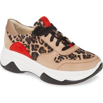 Paul Green Blend Lace-Up Sneaker, US / 6.5UK - Brown