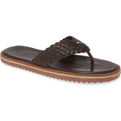 Tommy Bahama Saltholm Flip Flop, Brown