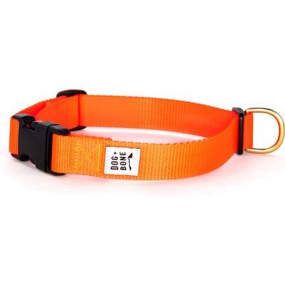 Dog + Bone Snap Collar, Orange