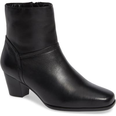 David Tate Model Bootie- Black