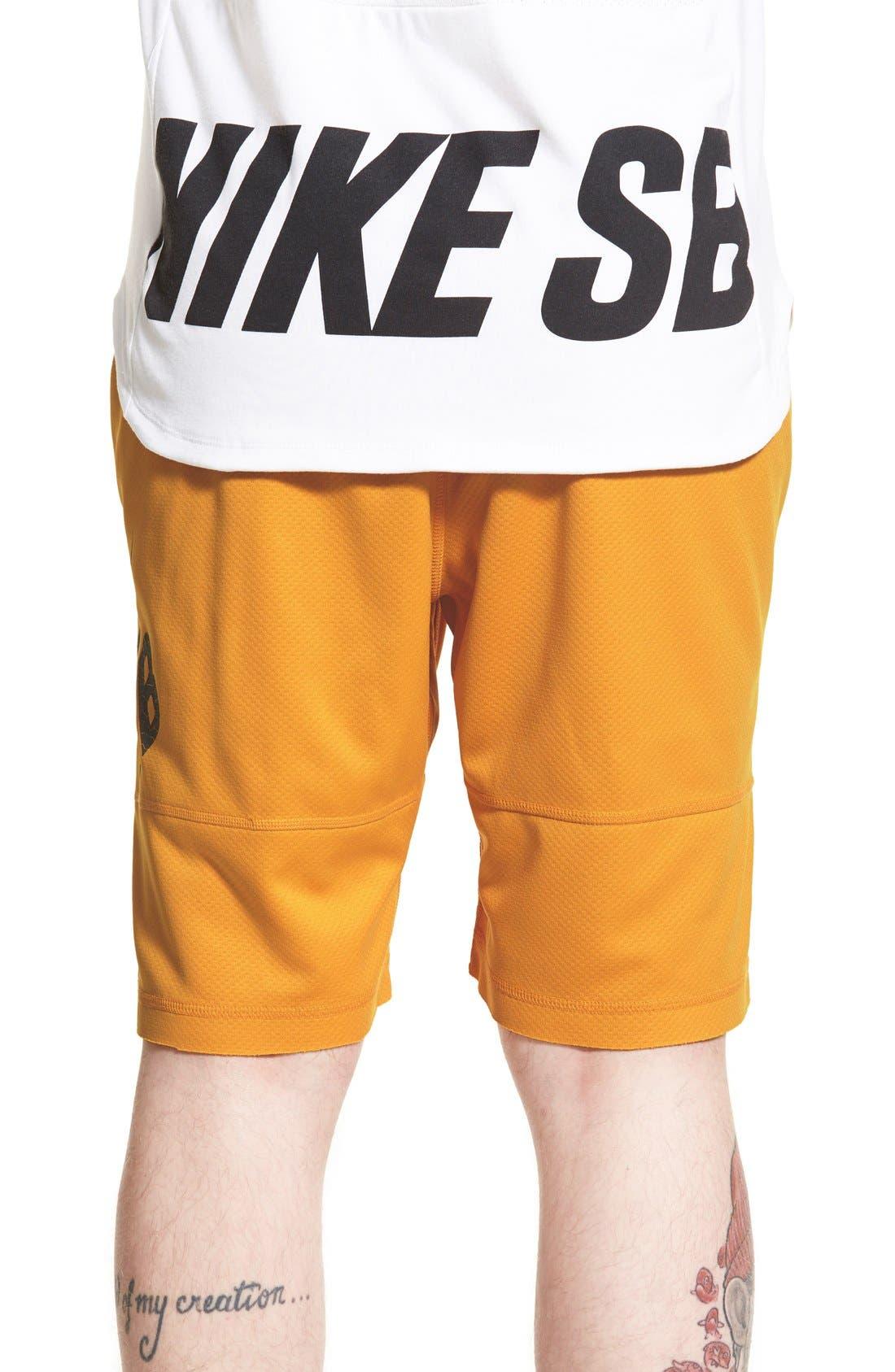,                             SB 'Sunday' Dri-FIT Shorts,                             Alternate thumbnail 24, color,                             713