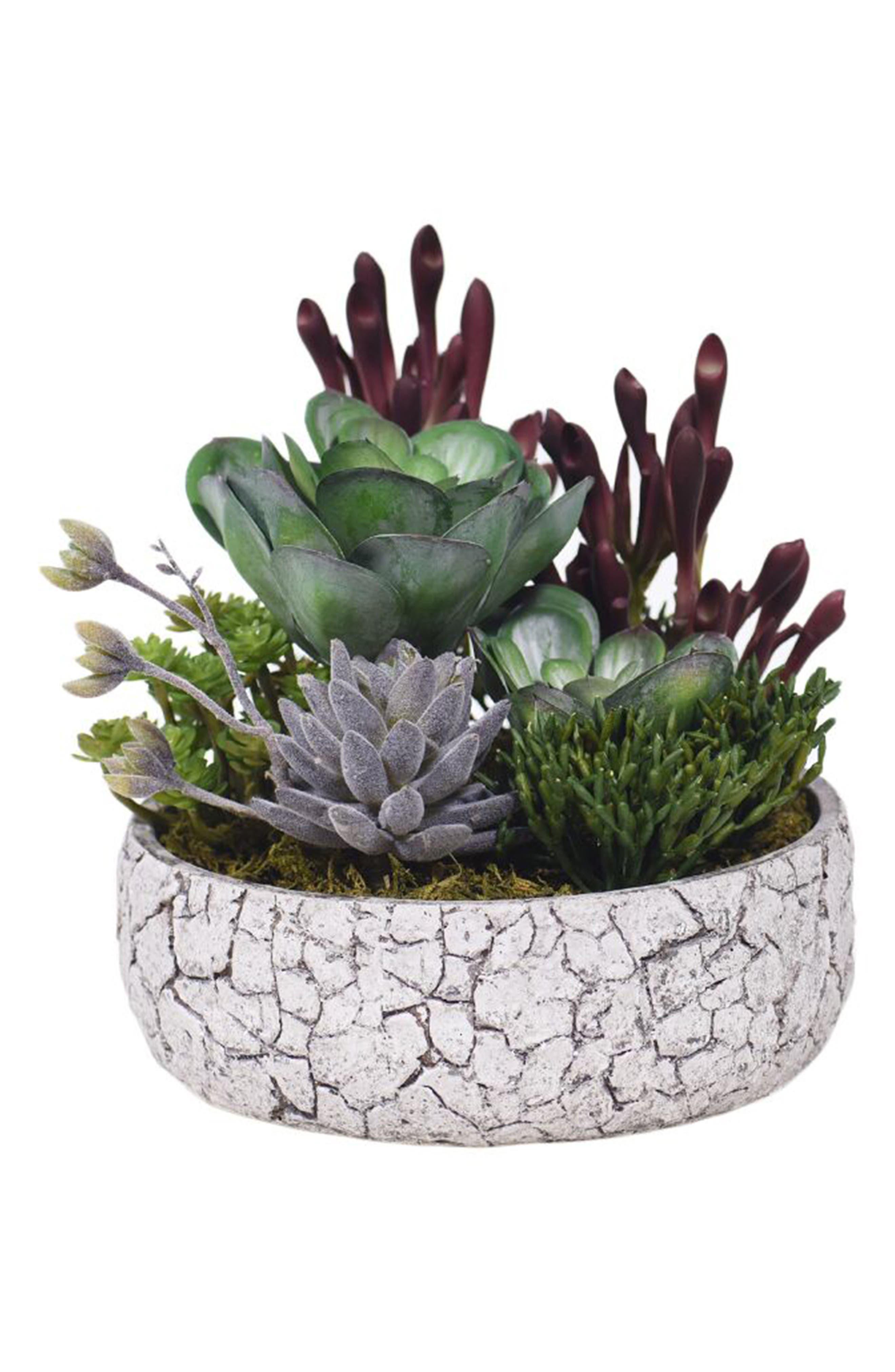,                             Rustic Succulent Arrangement Planter Decoration,                             Main thumbnail 1, color,                             GREEN