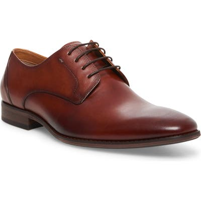 Steve Madden Dasher Plain Toe Derby, Brown