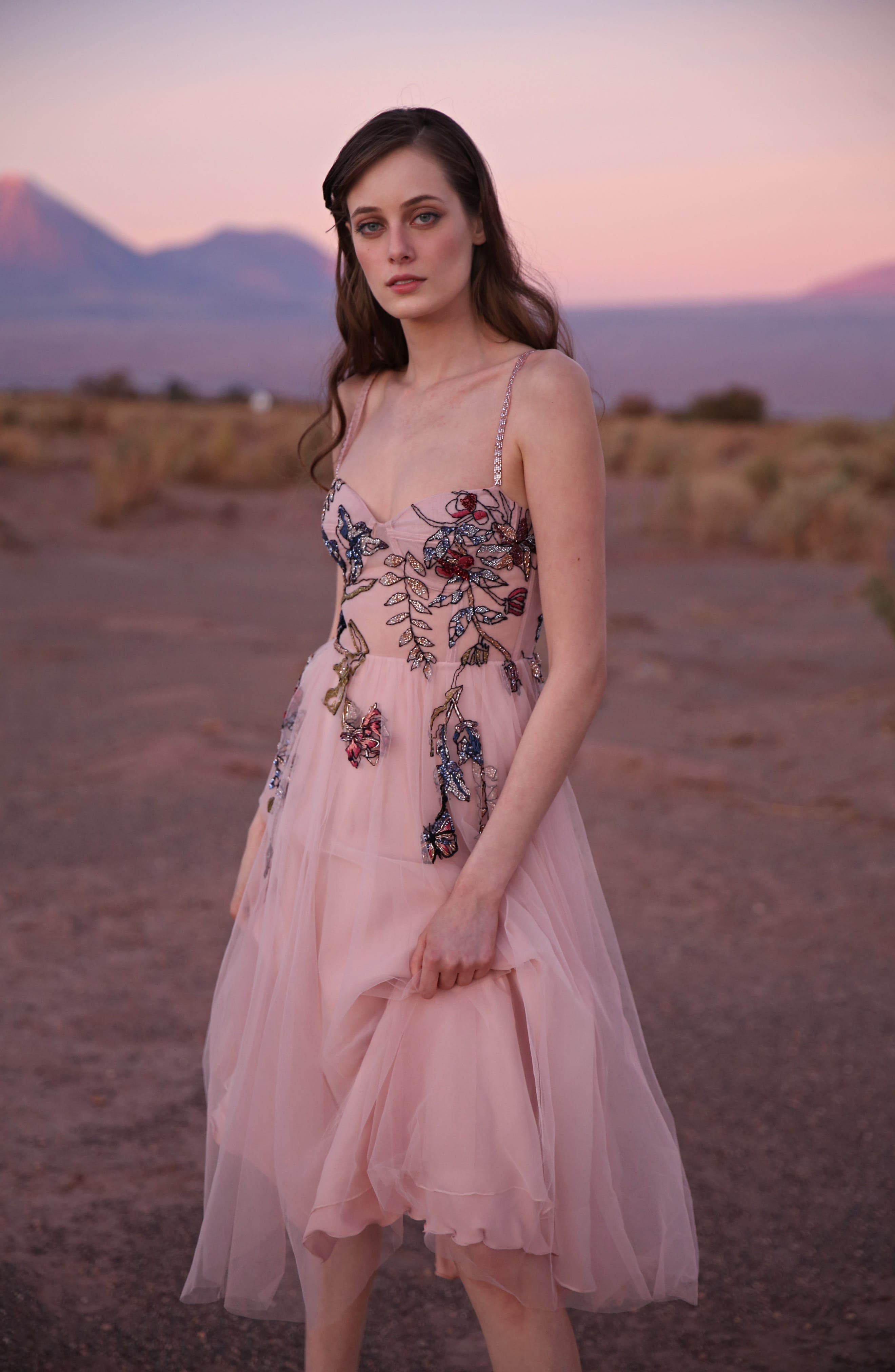 ,                             Beaded Floral Bustier Tea Length A-Line Dress,                             Alternate thumbnail 9, color,                             BLUSH