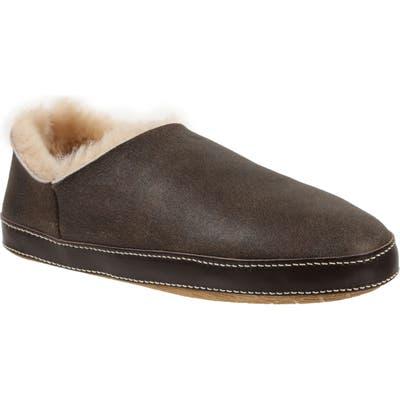 Ross & Snow Merlino Genuine Shearling Slipper, Brown