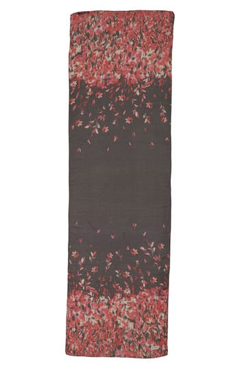 St. John Collection Black Flamingo Dégradé Print Scarf