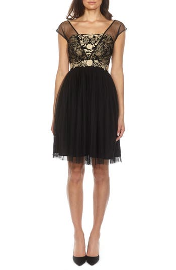 Lace & Beads Embroidered Mesh Skater Dress, Black