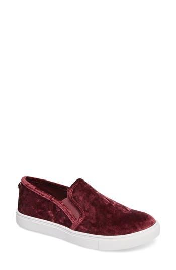 Women's Steve Madden Ecntrcv Slip-On Sneaker, Size 6.5 M - Purple