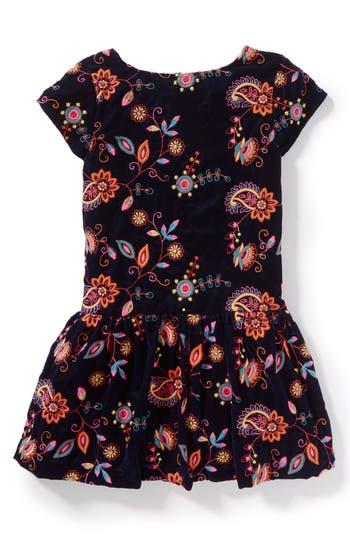 Toddler Girl's Peek Kara Embroidered Velvet Dress