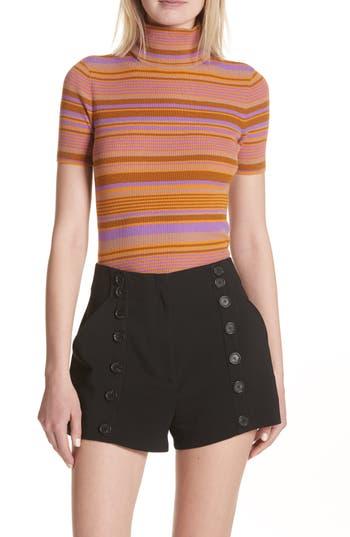 A.l.c. Doninico Stripe Turtleneck Stretch Wool Sweater, Purple