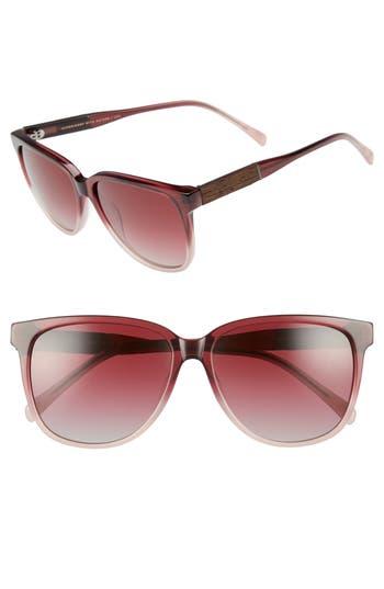 Shwood Mckenzie 5m Polarized Sunglasses - Sakura Fade/ Rose Gold