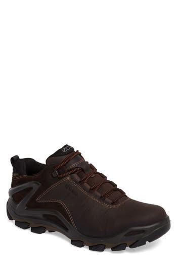 Men's Ecco Terra Evo Gtx Low Hiking Shoe