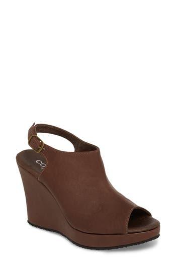 Women's Cordani 'Wellesley' Sandal, Size 5.5US / 36EU - Brown