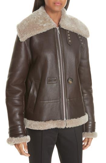 Helmut Lang Genuine Shearling Aviator Jacket, Brown