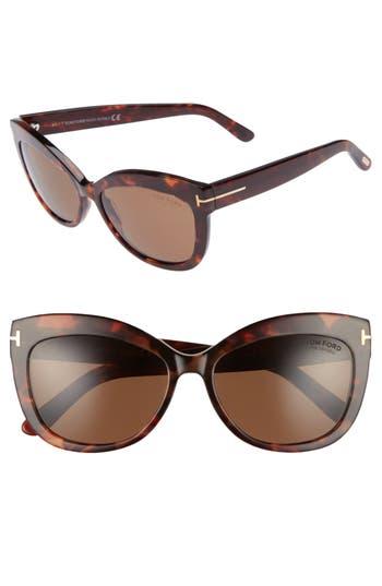 Women's Tom Ford Alistair 56Mm Gradient Sunglasses - Red Havana / Brown Polarized