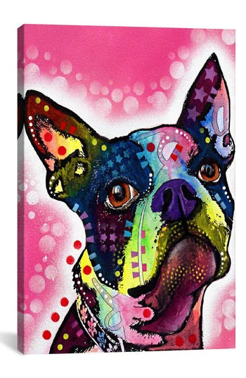 Icanvas 'Boston Terrier - Dean Russo' Giclee Print Canvas Art