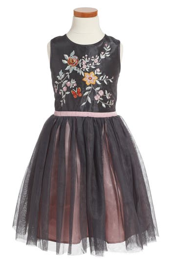 Toddler Girl's Zunie Embroidered Fit & Flare Dress