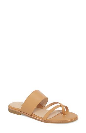 Yosi Samra Carina Slide Sandal, Brown
