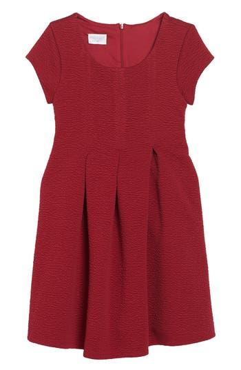Girl's Iris & Ivy Textured Knit Dress