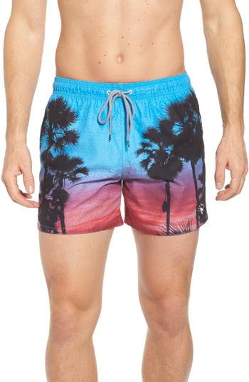 Men's Ted Baker London Sonset Palm Tree Swim Shorts, Size 2(s) - Blue