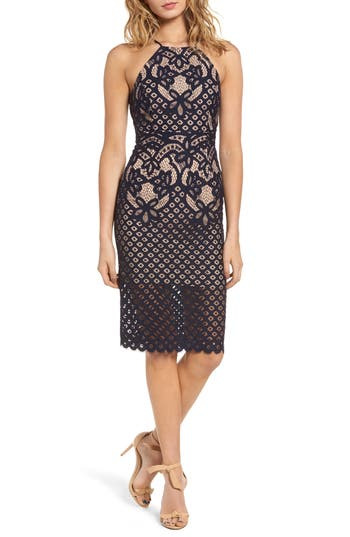 Women's Bardot Mila Lace Dress, Size Large - Blue