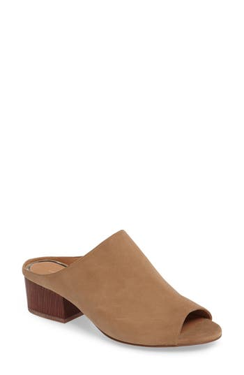 Women's Linea Paolo Cinch Block Heel Mule, Size 11 M - Brown