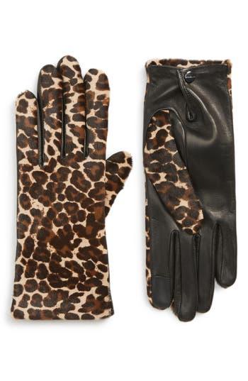Agnelle Leopard Print Genuine Calf Hair & Lambskin Leather Gloves, Black