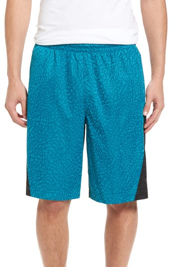 Nike Jordan Rise Vertical Basketball Shorts, Blue