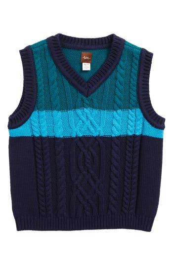 Boy's Tea Collection Edan Cable Knit Sweater Vest, Size S (4-5) - Blue