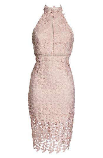 Bardot Gemma Halter Lace Sheath Dress, Pink