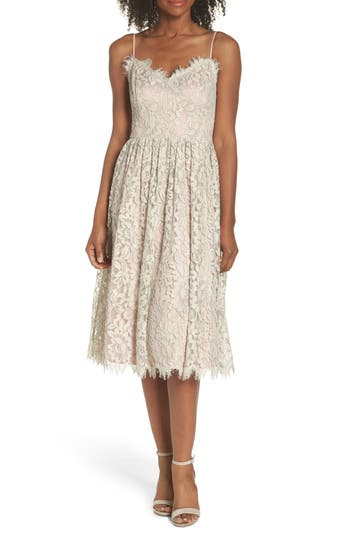Eliza J Lace Fit & Flare Dress, Ivory